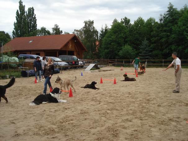 Hundeschule Runge-Ranch Helpsen